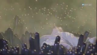پشت صحنه آهنگ جدید اکسو Electric kiss