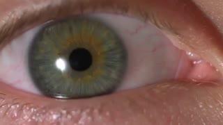 حرکت مردمک چشم 1000 فریم در ثانیه