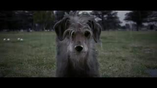فیلم جان ویک ولی برعکس dog wick