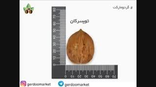 رکورد درشت ترین گردوها و ژنوتیپ های برتر گردو در ایران