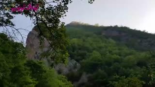 زیبایی خیره کننده و چشم نواز جنگل ابرو آبشار شیرین آباد