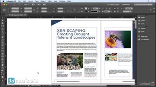 تکست فریم ایندیزاین : آموزش صفحه بندی به زبان فارسی InDesign 2018 text frames