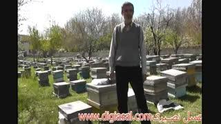 سخت ترین و زیبا ترین شغل در ایران