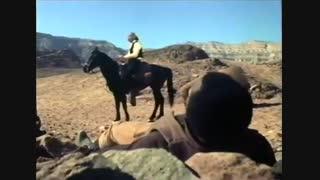 فیلم خارجی قدیمی انتقام بچه محصول ۱۹۷۷