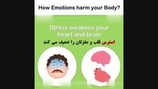 دکتر رادا 18: تاثیر احساسات بر روی سلامت جسم- دانستنی