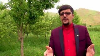 دروصف روستای توریستی ده چشمه