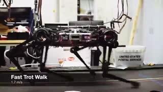 رباتی که بدون چشم نیز همه کار میکند