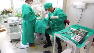 مرکز درمانی دکتر مصطفی نژاد