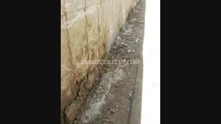 ۱۵۰ عدد کرگیری از دیوار حائل بتنی