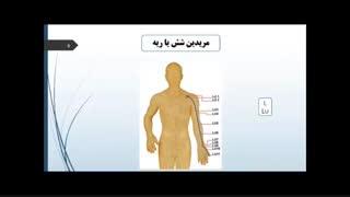 کانال های انرژی بدن و نقاط درمانی آن