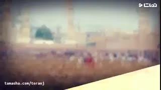 سالروز شهادت امام محمد باقر(علیع السلام)