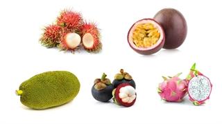 میوههای لاکچری به قیمت فضایی/ «جکفروت» کیلویی 500هزار تومان؛ «گارسینیا کامبوجیا» تمام شد!