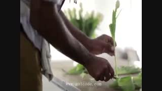 آموزش گل آرائی گلدان لاله