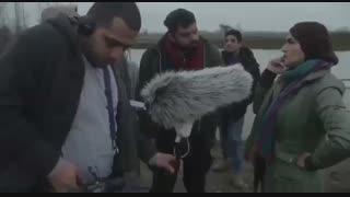 ویدیوی پشت صحنه فیلم سینمایی «مشمشه» شاهد احمدلو