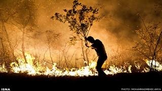 آتشسوزی مهیب در جنگلهای پاوه