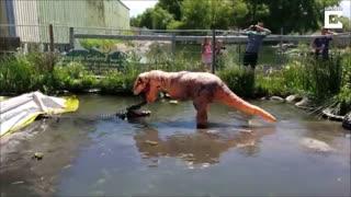 شوخی با تمساح 220 کیلویی