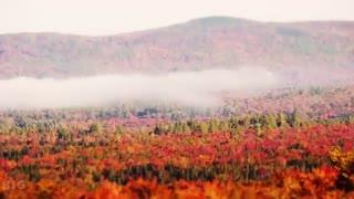 پاییز، فصل نیمکت های چوبی نم گرفته