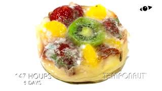 تایملپس فاسد شدن کیک میوه ای