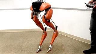 ربات 2 پای Cassie ساخته شده توسط Agility robotics