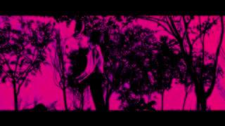 موزیک ویدیوBlood, sweat &tears ازBTS
